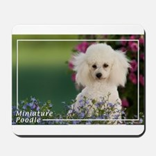 Miniature Poodle-4 Mousepad