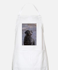 Curly Coated Retriever-1 Apron
