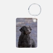 Curly Coated Retriever-1 Keychains