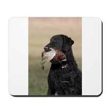 Curly Coated Retriever-6 Mousepad