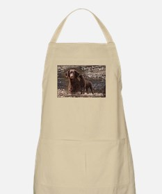 Curly Coated Retriever-3 Apron