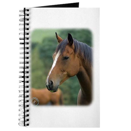 Horse 9A81D-04 Journal