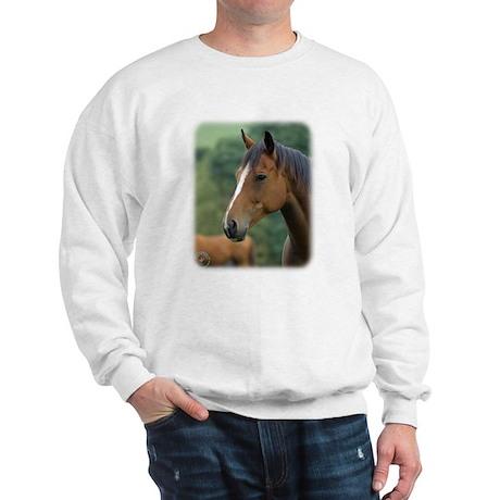 Horse 9A81D-04 Sweatshirt