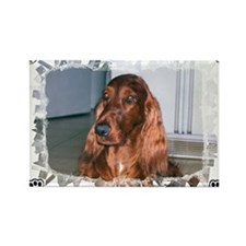 Irish setter Rectangle Magnet