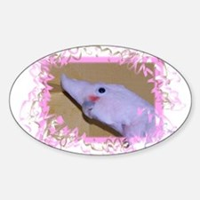 Goffin Cockatoo Oval Decal