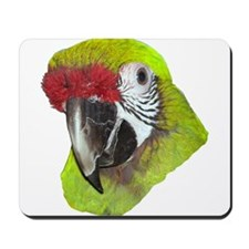 Millitary Macaw Mousepad