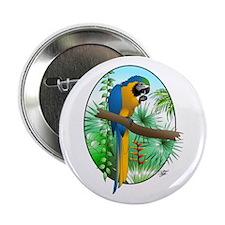 Macaw-BG Button
