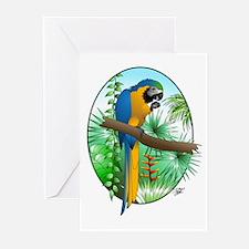 Macaw-BG Greeting Cards (Pk of 10)