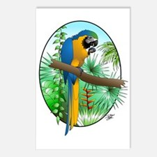 Macaw-BG Postcards (Package of 8)