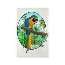 Macaw-BG Rectangle Magnet