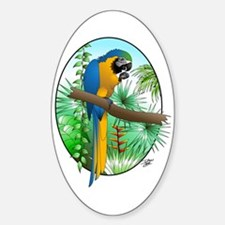 Macaw-BG Oval Decal
