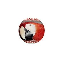 Scarlet Macaw Mini Button