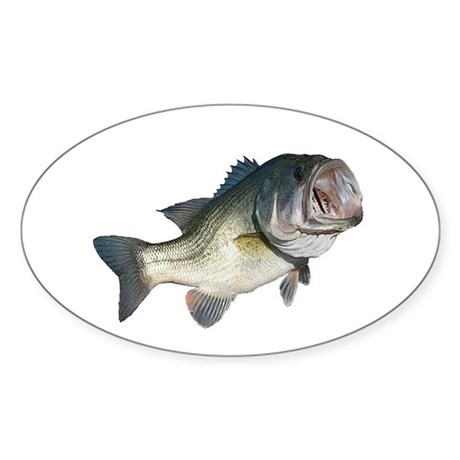 Bass Fisherman Sticker (Oval 10 pk)