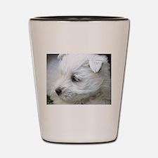 Westie Shot Glass