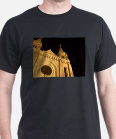Cathedral 13 T-Shirt