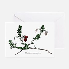 Cranberry Color Engraving Greeting Cards (Pk of 20