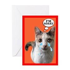 So..So Sorry Cat Card