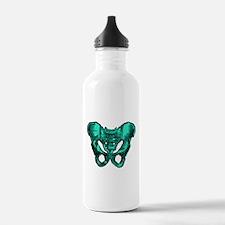 Human Anatomy Pelvis Water Bottle
