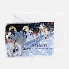 MKC Mush Greeting Cards (Pk of 10)