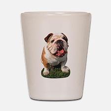 Bulldog Photo Shot Glass