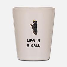 Rottweiler Life Shot Glass