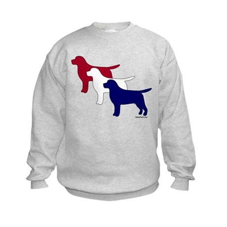 Patriotic Labs Kids Sweatshirt