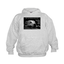 Pitbull Dogs - Ban BSL Hoodie