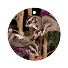 2 Gliders in Tree #2 Ornament (Round)