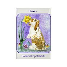 Holland Lop Rabbit Rectangle Magnet (10 pack)
