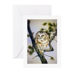 Animal Greeting Cards (Pk of 20)