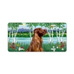 Birchese/Irish Setter (por) Aluminum License Plate