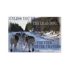 Lead Dog Rectangle Magnet