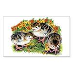Flower Garden Guinea Keets Sticker (Rectangle)