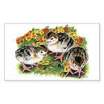 Flower Garden Guinea Keets Sticker (Rectangle 50 p