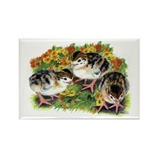 Flower Garden Guinea Keets Rectangle Magnet