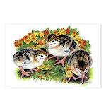 Flower Garden Guinea Keets Postcards (Package of 8