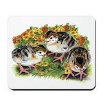 Flower Garden Guinea Keets Mousepad