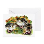 Flower Garden Guinea Keets Greeting Cards (Pk of 1
