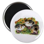"Flower Garden Guinea Keets 2.25"" Magnet (100"