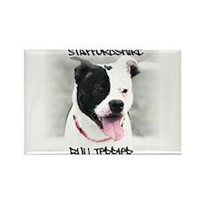 Staffordshire Bull Terrier Rectangle Magnet (100 p