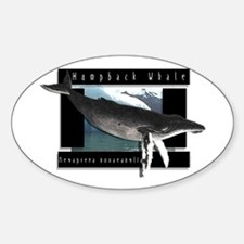 HumpBack Whale Art Decal