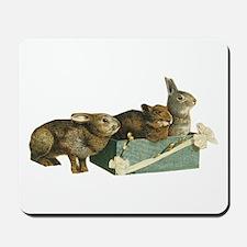 Three Bunnys Mousepad