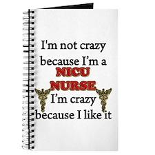 Unique Nicu nurse Journal