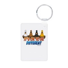 It's OK To be Different Keychains