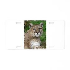 Cute Animal, mountain lions Aluminum License Plate