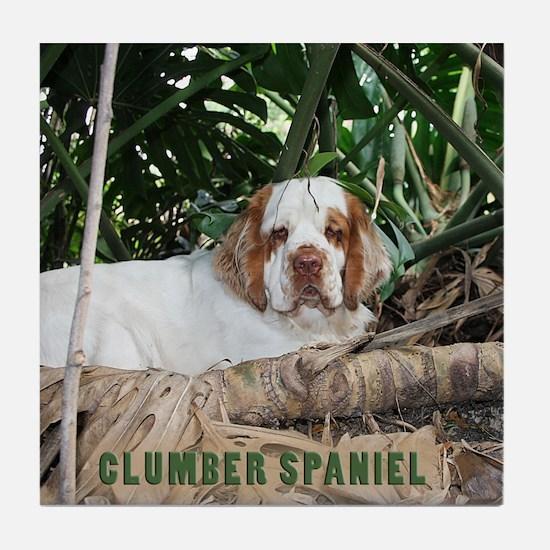 Clumber Spaniel Tile Coaster