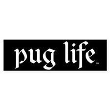 Black pug life Bumper Bumper Sticker