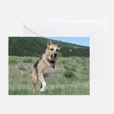 Tripawd Greeting Cards (Pk of 20)
