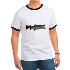 Brown trout T