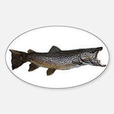 Brown trout Decal
